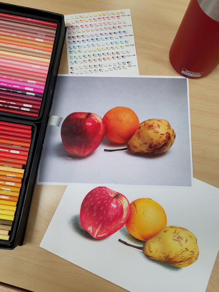 A art shot of the materials, reference picture, and finished piece for the fruit illustraion