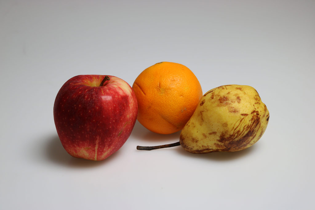 Reference image for the fruit illustration